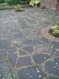 Patio Cleaning Glasgow image